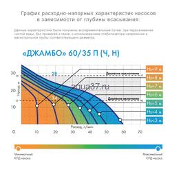 Насос-автомат Джамбо 60/35-Ч-24. Вид 2